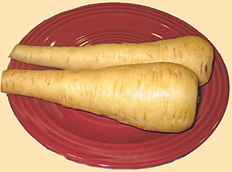 Fresh whole parsnips of plate